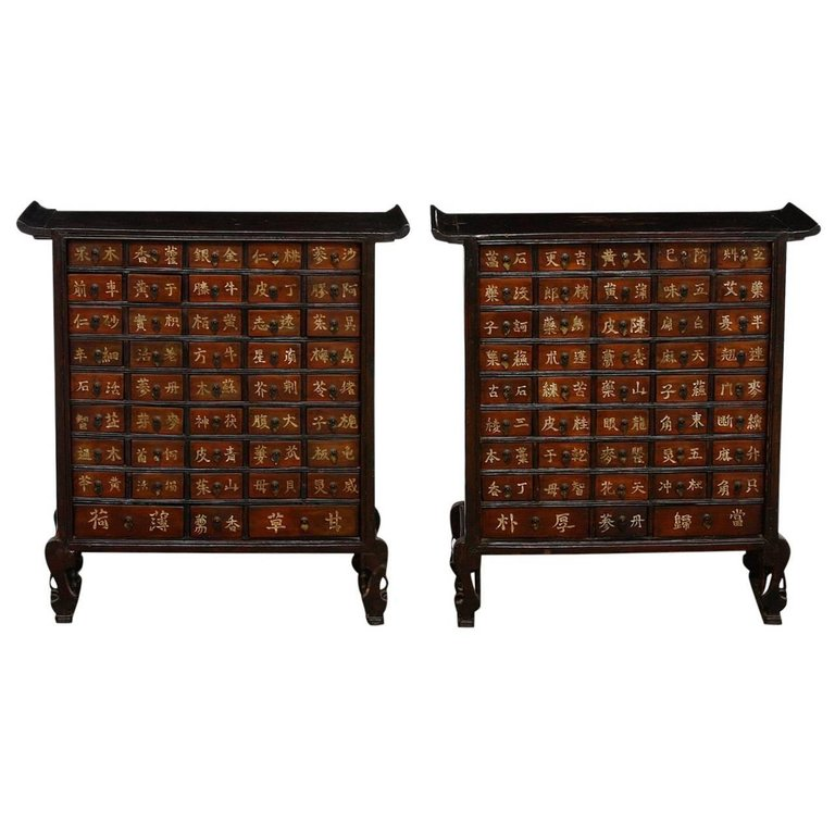 Pair of 19th Century Qing Dynasty Apothecary Cabinets or Chests