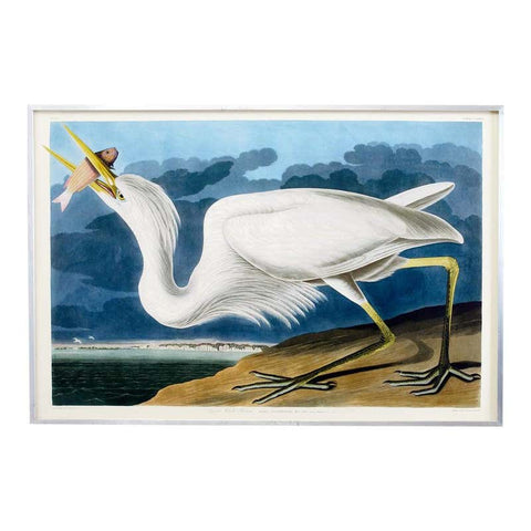 Great White Heron Plate #281 Oppenheimer Edition