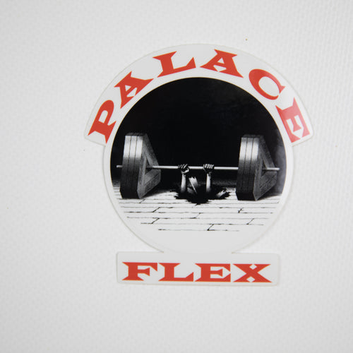 Palace P-Flex Sticker (MINT)
