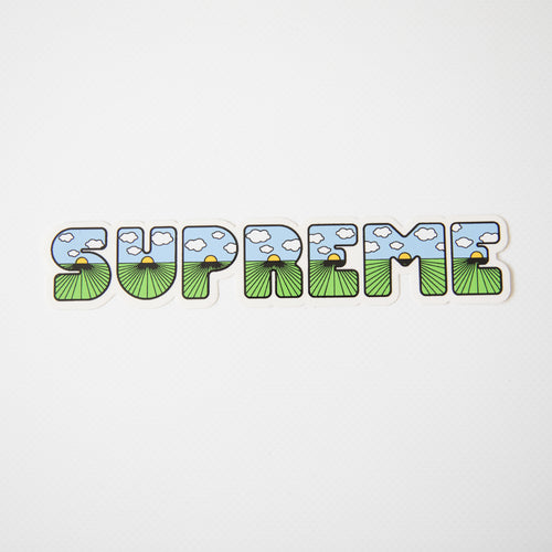 Supreme This Is The Shit Sticker (MINT)