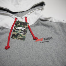 Bape x F1 1000 Two Tone Pullover Hoodie (Medium / MINT)