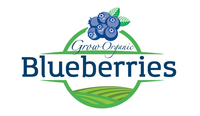 Grow Organic Blueberries