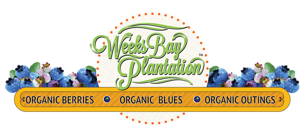 Weeks Bay Plantation Organic Blueberry Farm