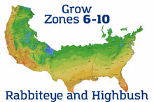 Organic Climax Blueberry Plant USDA Grow Zone Map