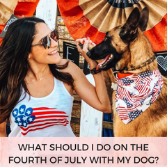 What Should I Do On The Fourth Of July With My Dog? | Bubu Brands