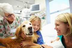 Three women of different ages sit smiling while petting a golden retriever dog