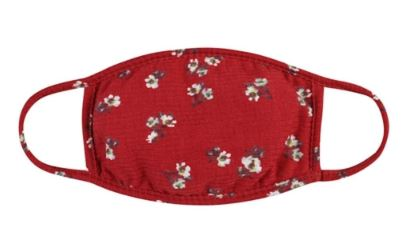 Red Floral Mask with Filter Insert