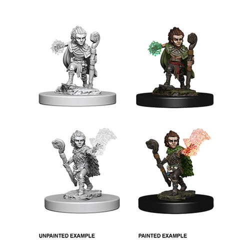 Pathfinder Deep Cuts Unpainted Miniatures: Wave 5- Gnome Male Druid