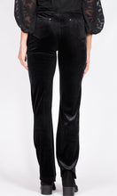 YW1866SS Velvet Pant with Gold Rivets (Pack)