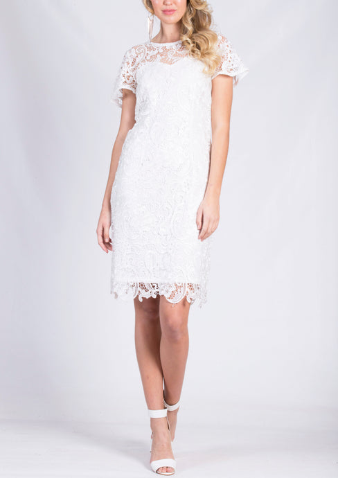 TG2547TB Short Sleeve Lace Dress (Pack) New Arrival