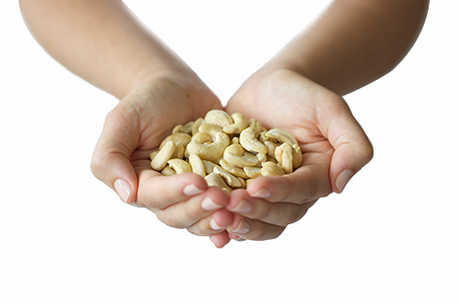 Organic Raw Cashews 500g
