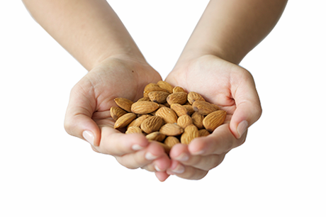 Organic Almonds Raw 500g