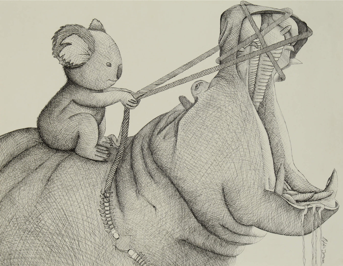 Ink drawing of koala bear riding a hippo by Natalia Torres