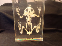 Paper Weight.- Frog Skeleton