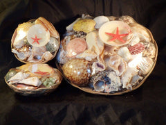 Shells In A Round Basket