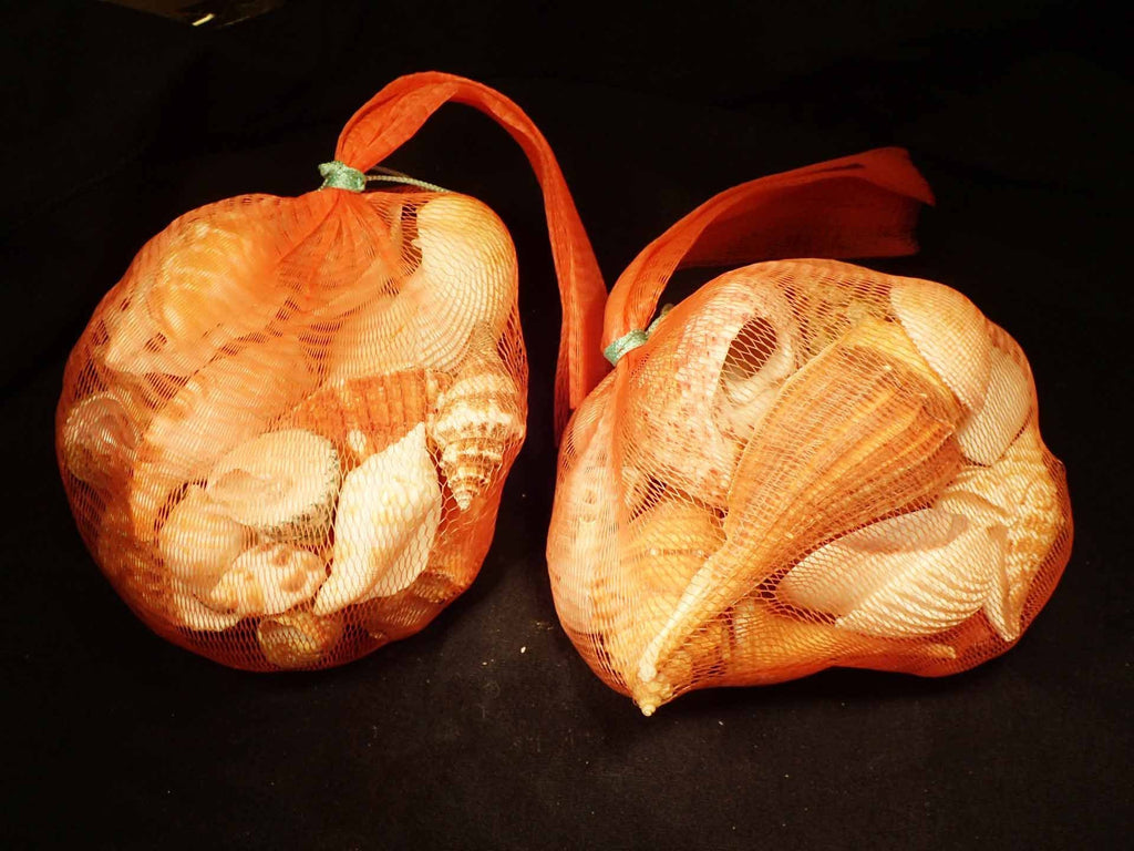 Shells In A Netted Bag