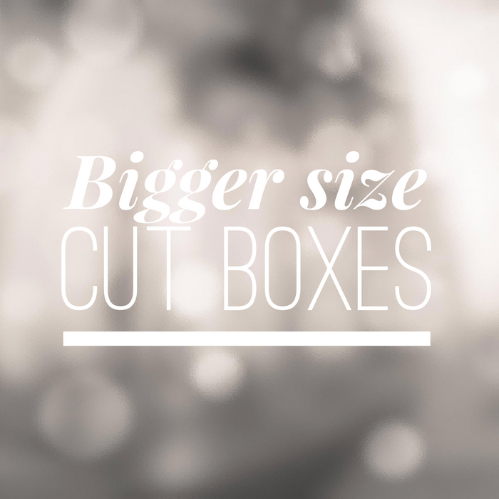 Copy of Bigger size cut boxes