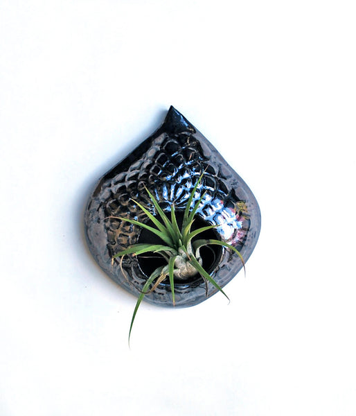 Air Plant Holder - Metallic Lace - Small