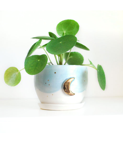 White and Aqua Planter with Gold Moon Design, Small Drainage hole