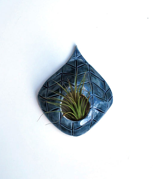 Air Plant Wall Hanging - Blue Chevron Design