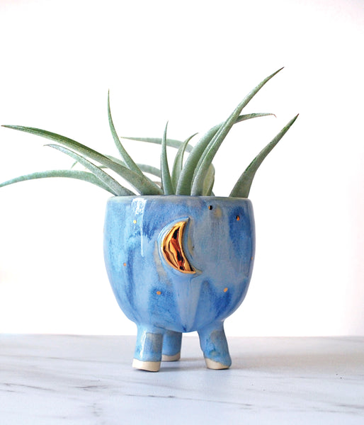 Blue and Gold Moon Mini Planter - Air Plant Succulent Planters