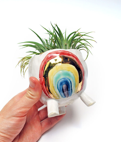 Rainbow Pinch Pot Planter - Classic Colors with Gold Luster