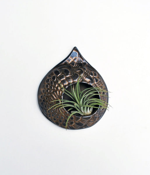 Air Plant Holder - Gold Metallic - Small