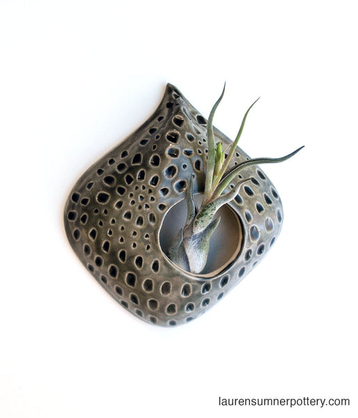 Air Plant Holder - Gray Carved Design - Large