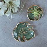 Monstera leaf dishes displaying jewelry and air plants