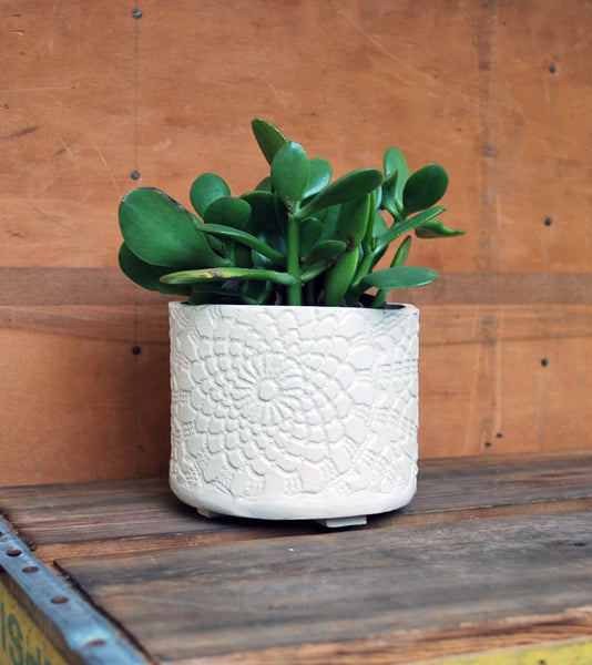 White Lace Ceramic Planter - Succulent Planter