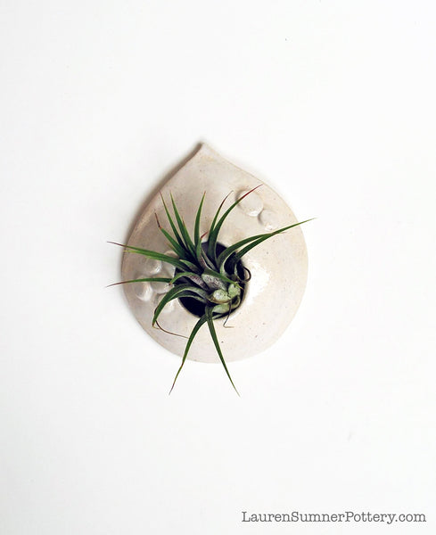 Ceramic Air Plant Holder - White Teardrop Shape - Small