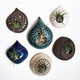 Air Plant Pods by Lauren Sumner Pottery