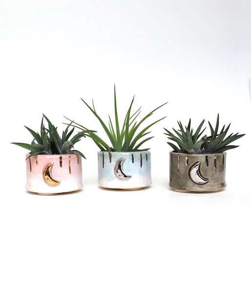 Moon and Dash Succulent Planter - Small