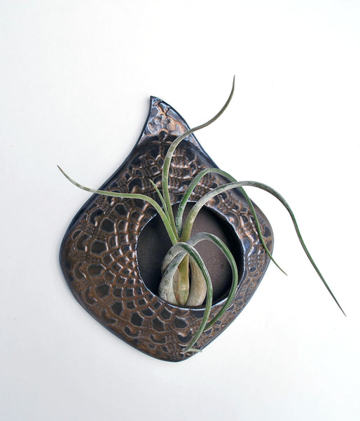 Air Plant Holder - Golden Bronze Lace - Large