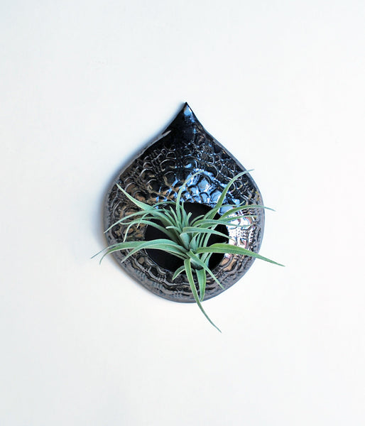Air Plant Holder - Metallic Black Lace - Large