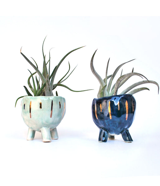 Aqua and Blue Planters with gold luster vertical lines, with air plants inside