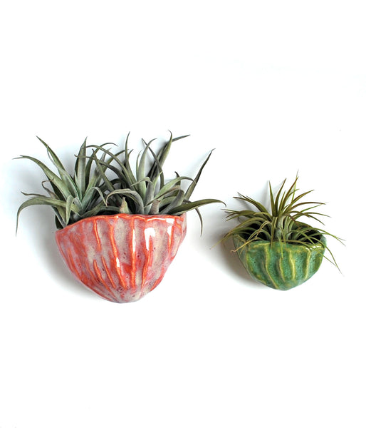 Ceramic Air Plant Holders - Pink, Green, White