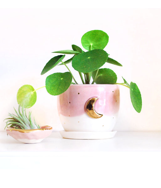 Pink and Gold Moon Ceramic Planter - Succulent Planter