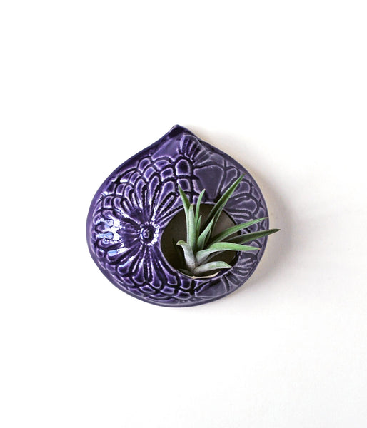 Purple Lace Air Plant Holder - Small