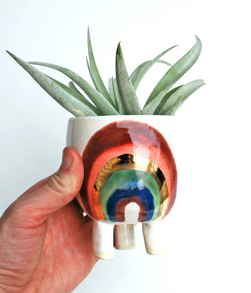 Rainbow Planter - Small