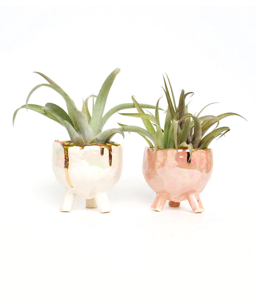 Gold Drip Iridescent Pinch Pot - Air Plant Succulent Planters