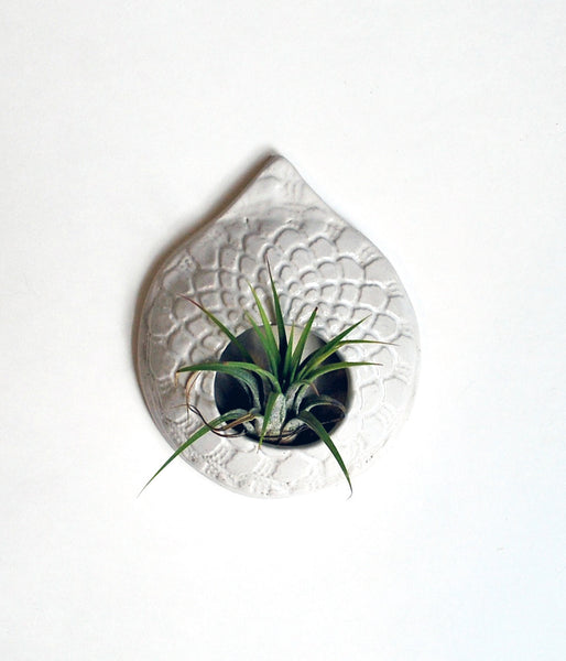 White Air Plant wall hanging