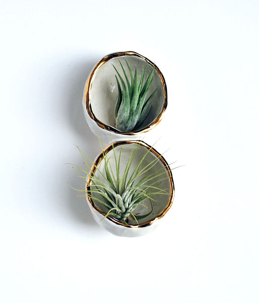 Ceramic Air Plant Holder - Double White and Gold Round Shape