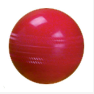 Development Cricket Ball Junior