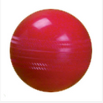 Development Cricket Ball Secondary
