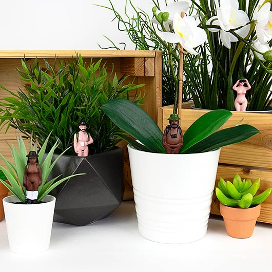 Pot plant naked ramblers by Gift Republic