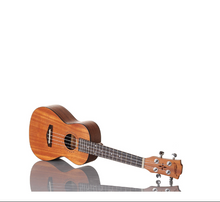 MAKANUMUSIC 24 Inch Mahogany Concert Ukulele with Gig bag