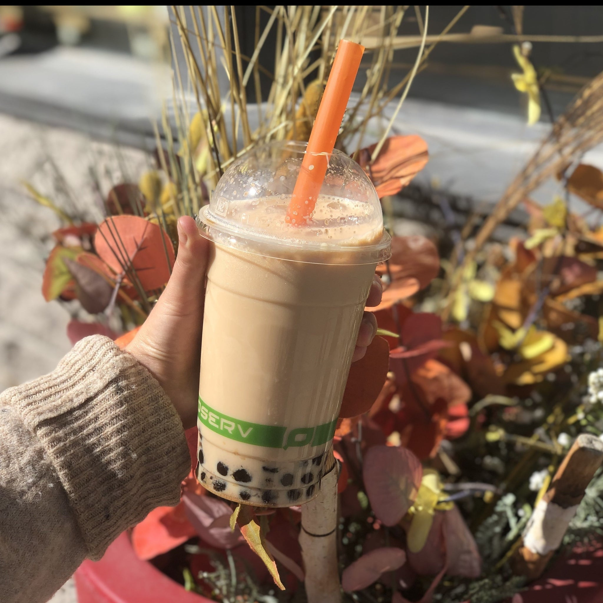 Three 6 Tea - Pumpkin Chai Bubble Tea