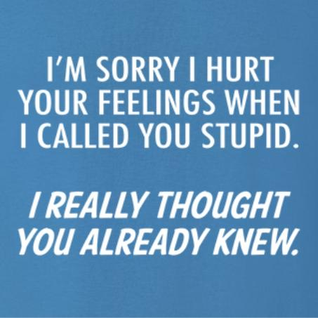 I'm Sorry I Hurt Your Feelings T Shirt by Calico ink