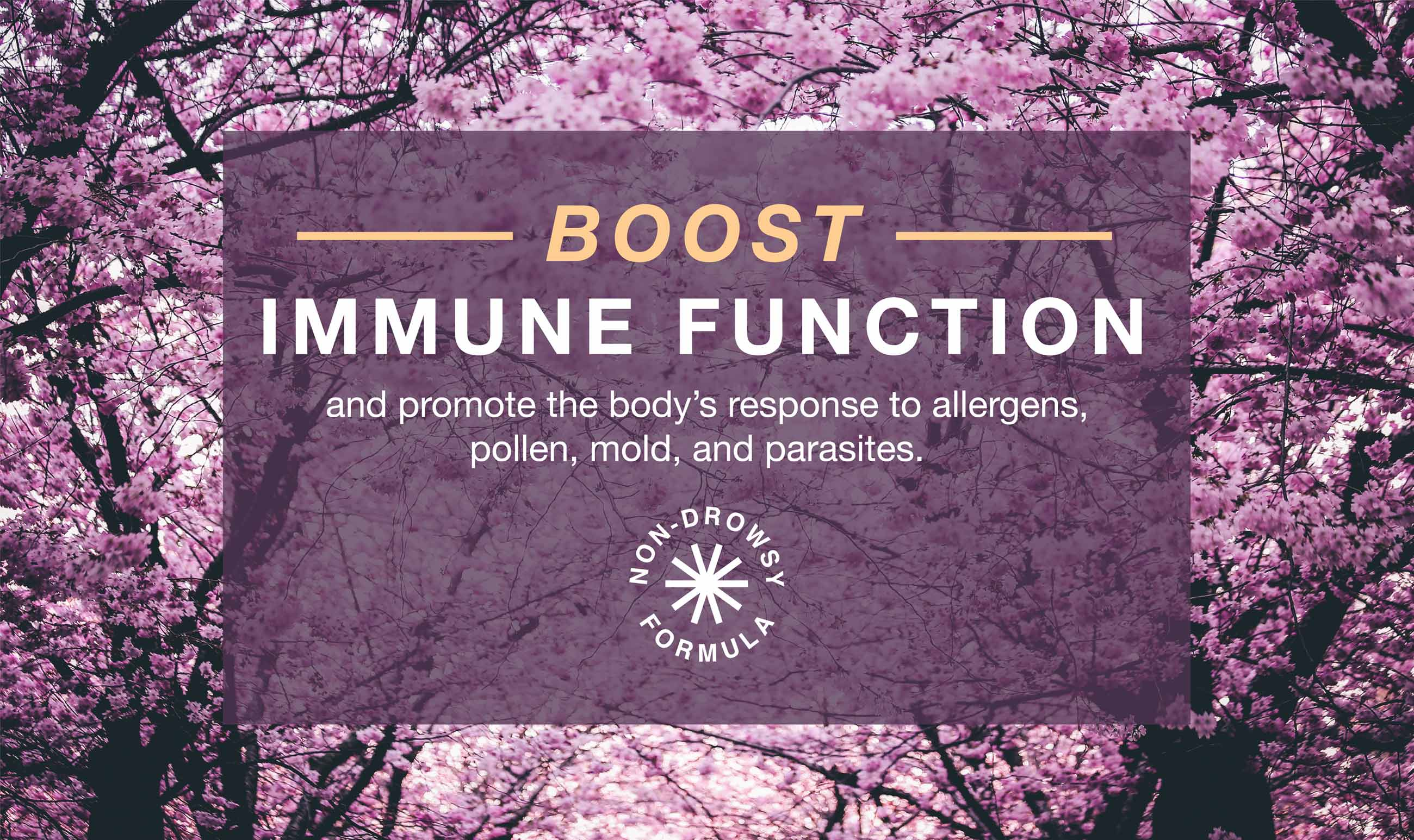 Non-drowsy formula to boost immune function and promote the body's response to allergens, pollen, mold, and parasites.